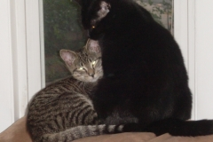 Zelda and Thaddeus